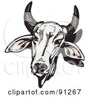 Royalty Free RF Clipart Illustration Of A White Horned Brahman Cow Head by Dennis Holmes Designs