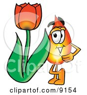 Flame Mascot Cartoon Character With A Red Tulip Flower In The Spring