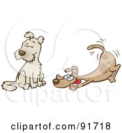 Royalty Free RF Clipart Illustration Of A Playful Dog Wagging His Tail And Trying To Entice A Friend To Play by gnurf