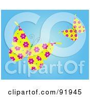 Two Floral Butterflies Over Blue