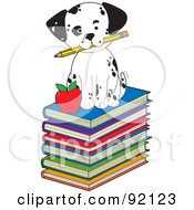 Cute Dalmatian Puppy Sitting On Stack Of Books With A Pencil And Apple