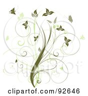 Floral Design Element Of A Vine With Green Butterflies On White