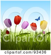 Royalty Free RF Clipart Illustration Of A Blue Butterfly Over Colorful Tulips In Grass by elaineitalia