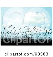 Royalty Free RF Clipart Illustration Of A Crop Of Silhouetted Wheat Against A Blue Sky With Clouds And Sunshine