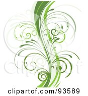 Royalty Free RF Clipart Illustration Of A Green Curvy Organic Vine With Young Curly Stems On White