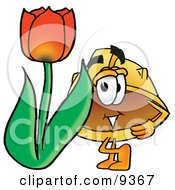Hard Hat Mascot Cartoon Character With A Red Tulip Flower In The Spring