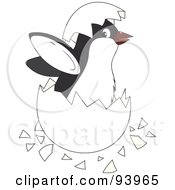 Royalty Free RF Clipart Illustration Of A Cute Penguin Chick Hatching From An Egg
