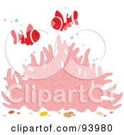 Royalty Free RF Clipart Illustration Of Two Happy Red And White Clownfish With Bubbles Over A Pink Sea Anemone by Alex Bannykh