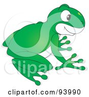 Royalty Free RF Clipart Illustration Of A Cute Green And White Tree Frog by Alex Bannykh