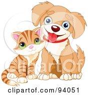 Adorable Striped Kitten Beside A Happy Little Puppy