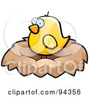Chubby Yellow Bird Standing In A Nest