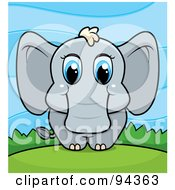 Poster, Art Print Of Baby Elephant With Big Blue Eyes On A Hill