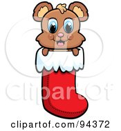 Royalty Free RF Clipart Illustration Of A Cute Baby Bear Peeping Out Of A Christmas Stocking
