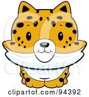 Royalty Free RF Clipart Illustration Of A Baby Bobcat Smiling Upwards