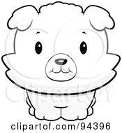 Baby Bichon Puppy Smiling Upwards