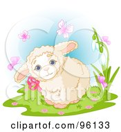 Royalty Free RF Clipart Illustration Of A Cute Baby Lamb Wearing A Pink Bow Surrounded By Spring Time Butterflies by Pushkin
