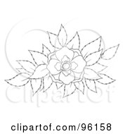 Royalty Free RF Clipart Illustration Of An Outline Of A Blooming Flower Over Leaves