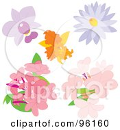 Digital Collage Of Beautiful Orchid Lotus And Phlox Flowers
