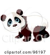 Royalty Free RF Clipart Illustration Of An Adorable Baby Walking Panda