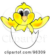 Royalty Free RF Clipart Illustration Of A Yellow Hatching Chick In A White Egg Shell by Pams Clipart