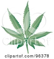 Royalty Free RF Clipart Illustration Of A Fresh Green Cannabis Leaf by Rasmussen Images #COLLC96378-0030