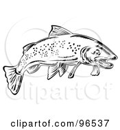 Black And White Speckled Swimming Trout Fish
