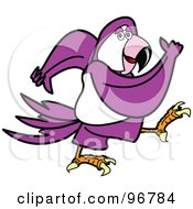 Purple Parrot Walking And Swinging His Arms