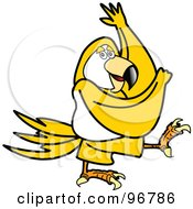 Yellow Parrot Walking Or Dancing And Swinging Its Wings