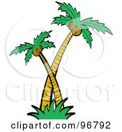 Royalty Free RF Clipart Illustration Of Big And Small Coconut Palm Trees by Andy Nortnik