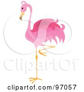 Royalty Free RF Clipart Illustration Of A Pink Flamingo Bird Balanced On One Leg by Pams Clipart