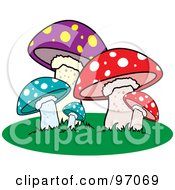 Patch Of Colorful Spotted Mushrooms On Grass