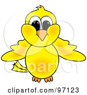 Poster, Art Print Of Yellow Chick Facing Front