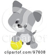 Royalty Free RF Clipart Illustration Of A Playful Gray Schnauzer Puppy Resting One Paw On A Tennis Ball by Maria Bell