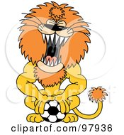 Royalty Free RF Clipart Illustration Of A Roaring Lion Pushing Down On A Soccer Ball by Zooco