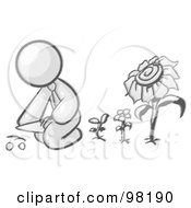 Royalty Free RF Clipart Illustration Of A Sketched Design Mascot Man Kneeling By Growing Sunflowers To Plant Seeds In A Dirt Hole In A Garden