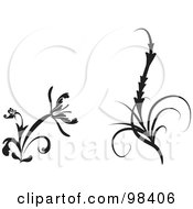 Digital Collage Of Two Black And White Flourish Design Elements With Flowers