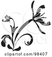Black And White Flourish Design Element With A Large Flower And Curving Leaves