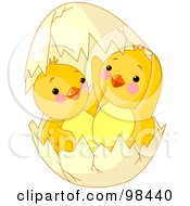 Royalty Free RF Clipart Illustration Of Adorable Chicks In A Broken Egg Shell