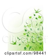 Background Of A Green Vine And Swallows Over Gradient Green To White
