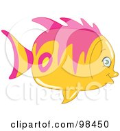 Cute Chubby Pink And Yellow Fish In Profile