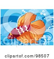 Royalty Free RF Clipart Illustration Of A Red And Orange Siamese Fighting Fish by mayawizard101