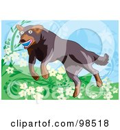 Royalty Free RF Clipart Illustration Of A Ball Fetching Dog 7 by mayawizard101