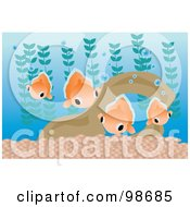 Royalty Free RF Clipart Illustration Of A Group Of Goldfish In An Aquarium