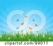 Butterflies Over Wild Flowers And Grass Under A Shining Sky
