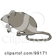 Royalty Free RF Clipart Illustration Of An Alert Mouse Standing Up On His Hind Legs