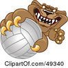 Royalty Free RF Clipart Illustration Of A Cougar Mascot Character Grabbing A Volleyball by Toons4Biz