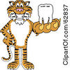 Royalty Free RF Clipart Illustration Of A Tiger Character School Mascot Holding A Tooth by Toons4Biz
