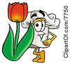 Clipart Picture Of A Chefs Hat Mascot Cartoon Character With A Red Tulip Flower In The Spring by Toons4Biz