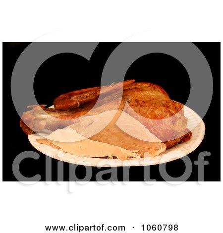 Turkey Leftovers On a Paper Plate - Royalty Free Thanksgiving Stock Photo by Kenny G Adams