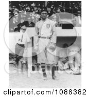 Tyrus Raymond Cobb Detroit Tigers Baseball Player Free Historical Baseball Stock Photography by JVPD